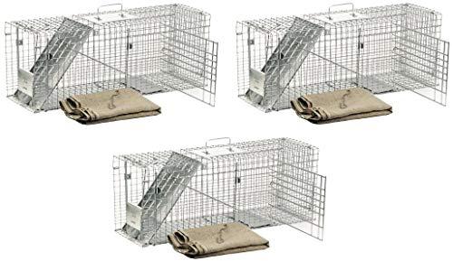 (Havahart 1099 Feral Stray Cat Rescue Kit (3 Kits))
