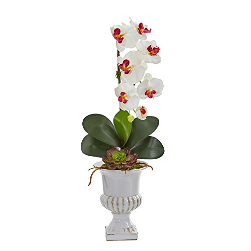 Nearly Natural 1604-WH Phalaenopsis Orchid and Succulent Artificial Urn Silk Arrangements, White