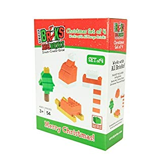 Strictly Briks Building Bricks and Blocks Set | Big Briks Christmas | 100% Compatible with All Major Brick Brands | 54 Pieces