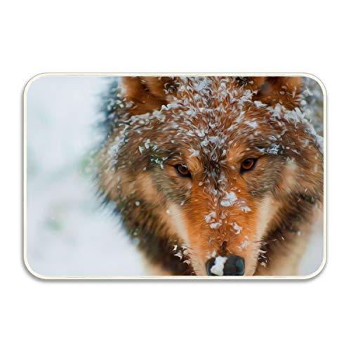 Amazon.com: farg Lazy Wolf Camping Door Mat Entrance Floor ...