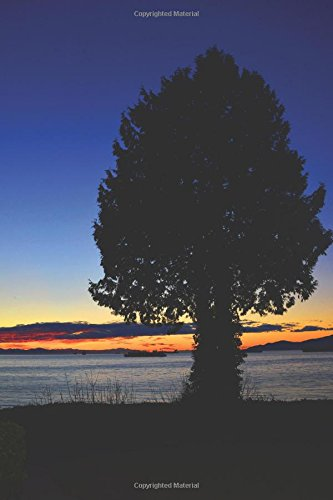 Download Journal: Tree Silhouette (Stanley Park, BC) pdf