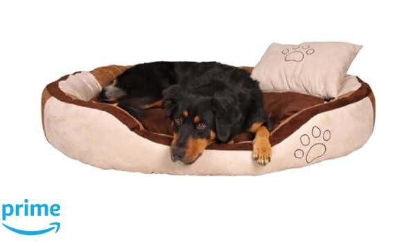 Trixie Bonzo perro cama, grandes, 100 × 70 cm, beige/marrón: Amazon.es: Productos para mascotas