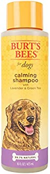 Burt's Bees for Dogs Natural Calming Puppy and Dog Shampoo