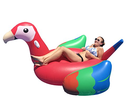 Giant Inflatable Pool Floats For Adults Inflatables
