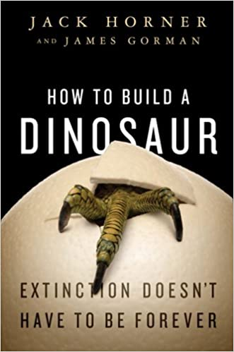asteroid theory dinosaur extinction essay Dinosaur extinction theories  why did the dinosaurs die out asteroid impact  the alvarez hypothesis suggests the mass extinction of the dinosaurs was caused.
