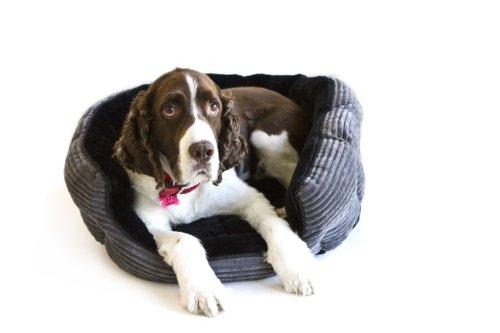 Danazoo Corduroy Cuddler Pet Bed, Large, Gray