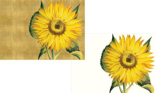 Caspari Sunflower Boxed Note Cards - 8 Note Cards & Envelopes