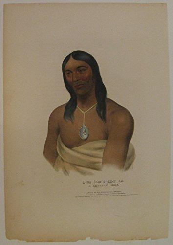 A-Na-Cam-E-Gish-Ca: A Chippeway Chief.