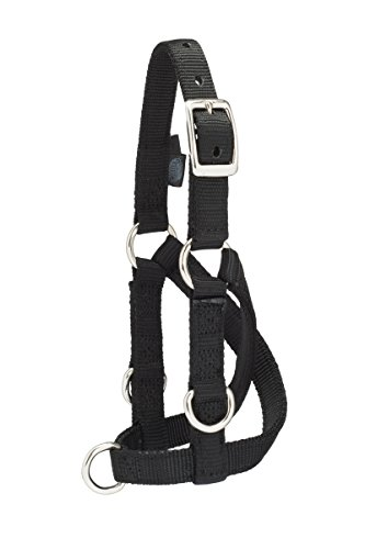 Weaver Leather Livestock Sheep & Goat Training Halter, Small, Black