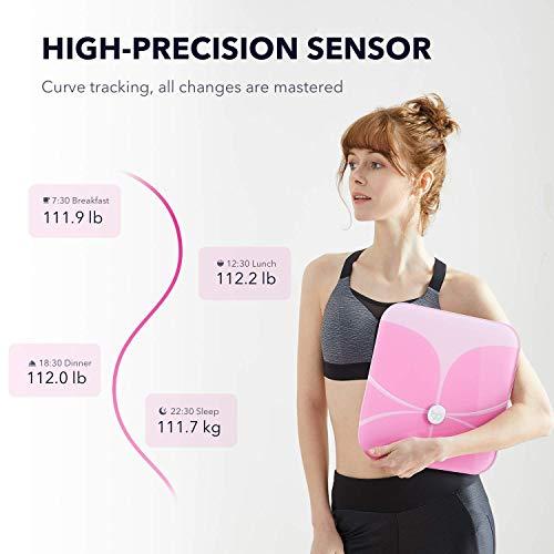 Femometer Butterfly Bluetooth Body Fat Scale - Smart BMI Scale - Digital  Bathroom Wireless Weight