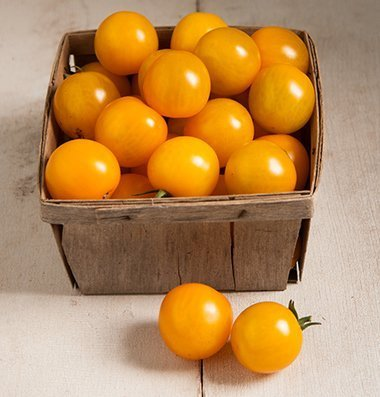 David's Garden Seeds Tomato Cherry Esterina (Orange) 25 Organic Hybrid Seeds