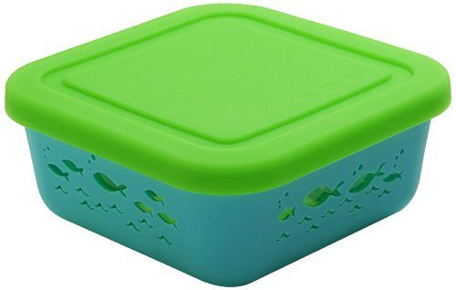 Brinware NO Plastic Food Storage Container Glass and Silicone