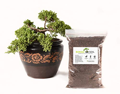 Bonsai Soil by Perfect Plants - 2 Quarts Mix for Bonsai Trees of All Types - Nutrient Boost for Containerized Plants ... ()