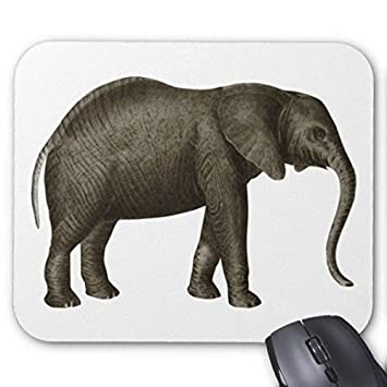 Yanteng Cojín de ratón del Elefante: Amazon.es: Electrónica