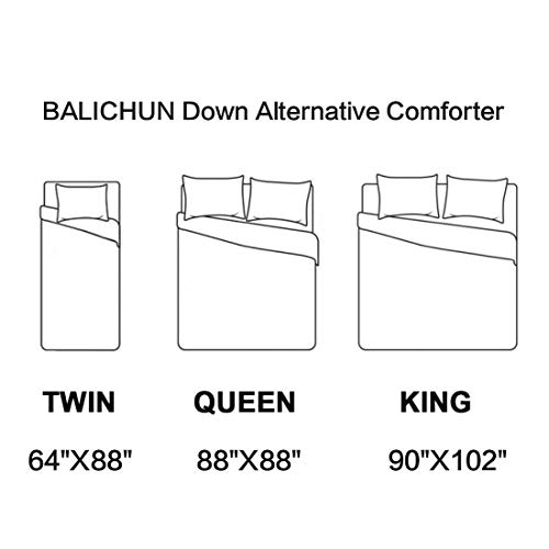 """All Season Reversible Down Alternative Comforter Queen Size White Duvet Insert with Corner Tabs - Quality Winter Warm Soft Comforter and Hypoallergenic (White,Queen,88""""x88"""")"""