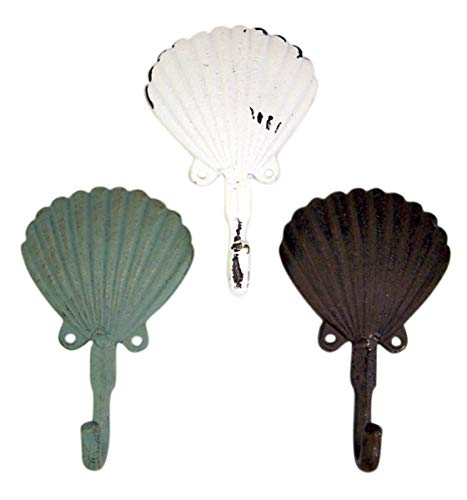 Scallop Shell Wall Hook 6 1/2 inch Set of 3