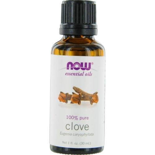 Study Oil Painting - NOW Foods Clove Oil