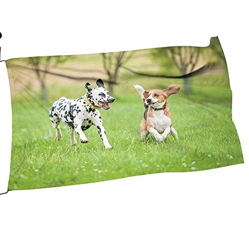 alsohoem Garden Flag America Dalmatian Dog Playing with Beagle Spring Summer Yard Outdoor Decorative 18