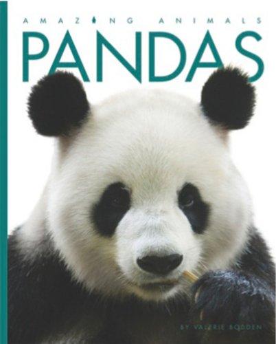 Amazing Animals Pandas Valerie Bodden product image