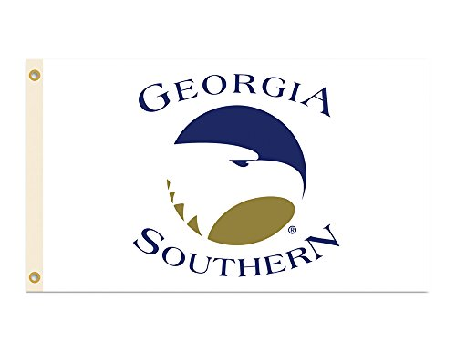 BSI Indoor Outdoor Sports Banner Georgia Southern Eagles Team Logo 3 Ft. X 5 Ft. Flag With Grommets 95137 (Georgia Southern Car Flag)