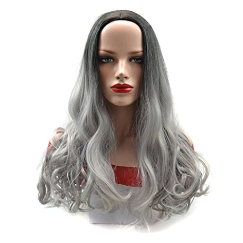 Old Ladies wigs, Inkach Female Women Long Curly Gray Ombre Grandmother Synthetic Hair Wig