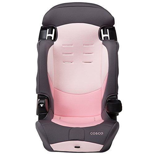 41vLf2wz%2B4L - Cosco Finale DX 2-in-1 Booster Car Seat, Sweet Berry