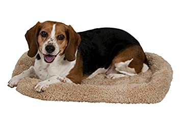 Doskocil Pet cama Caseta, 23,5 por 16.5 de la Distribución pro-motion - directa: Amazon.es: Productos para mascotas