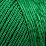 Bulk Buy: Caron Simply Soft Yarn Solids (2-pack) (Kelly Green)