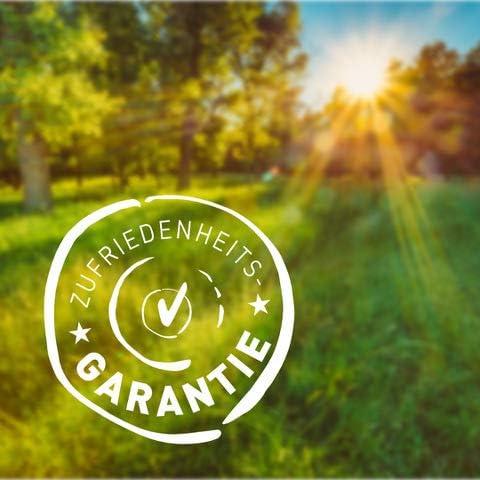 Batido de proteínas vegano (orgánico), 750g - 82% de proteína - sin soja - proteína de guisante y proteína de arroz - Calidad orgánica superior - ...