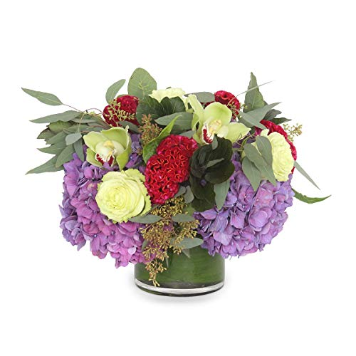 Neighborly Love by Plantshed New York Flowers - Same Day Flower Hand Delivery in NYC
