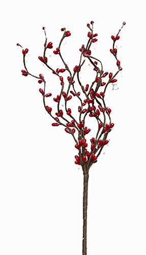Red Berry Branches (CWI Gifts 6-Piece 9-Branch Pip Berry Pick Set, 12-Inch, Red)