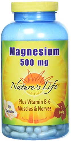Nature's Life® Magnesium Capsules, 500mg | High Potency Magnesium Supplement Plus Vitamin B-6 for Muscles & Nerves Support | 250 ()