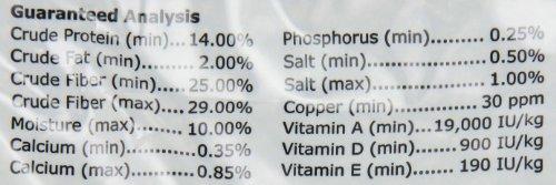 Oxbow Animal Health Bunny Básicos Esenciales Adultos Conejo Pet Food-10Lbs