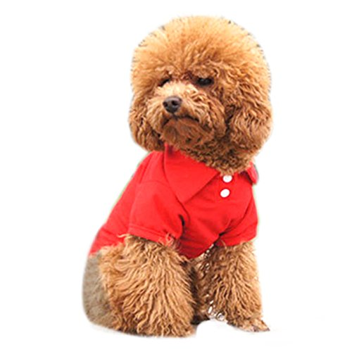 (Alfie Pet - Hollis Solid Color Polo Shirt - Color: Red, Size: M)