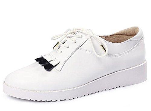 YTTY White White YTTY White Lace c6RP84nn