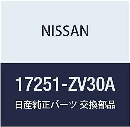 Fuel Tank Cap Nissan 17251-AR201