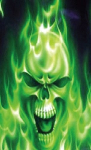 JWraps Green Fire Skull Custom Designed E-Cigarette Protective Skin Wrap for Vapor Flask V2.1 DNA40 MOD Vaporizer