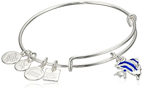 Alex Ani Expandable Sterling Bracelet
