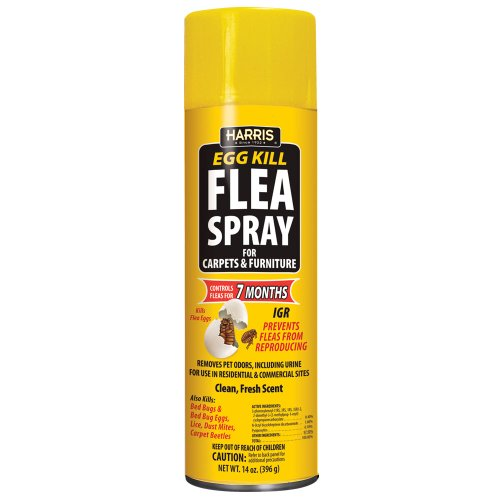 Harris Flea & Egg Killer, 14oz Aerosol Spray with 7-Month Residual for Carpets, Furniture and More