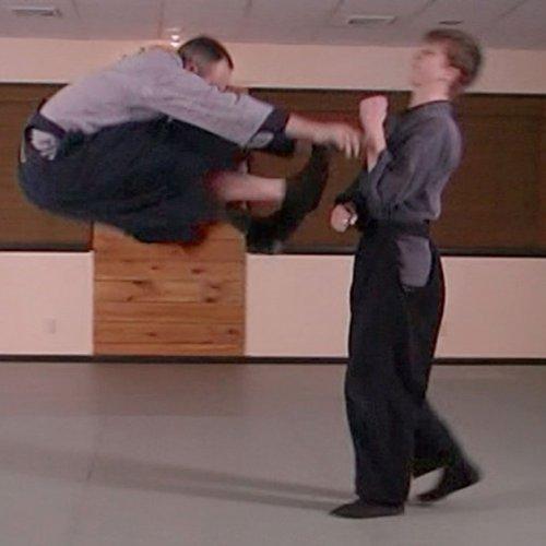 Martial Arts Instructional Video Taijutsu Fundamentals Vol1