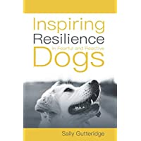 Inspiring Resilience in Fearful and Reactive Dogs