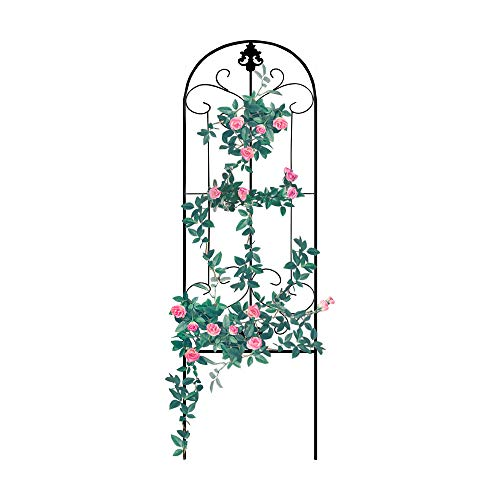 GrayBunny GB-6900BL1, Garden Trellis for Vines and Climbing Plants, Black Metal Wire Lattice Grid Panels for Cucumber & Vegetables, Clematis Support, Rose Vines, Durable & Sturdy Beautiful Plant Decor