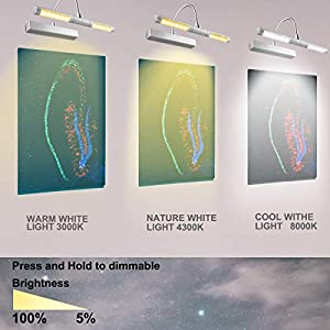 LUXSWAY Picture Light Wireless Battery Operated Heads Rotatable 180 Degree LED Remote Control Dimmable Natural/Warm/Cold Light Time Preset Lighting for Artwork/Pictures/Diplomas-Silver