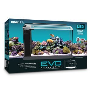 Fluval 10528A1 Evo V Marine Aquarium Kit, 5 gal by Fluval