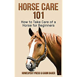 Horse Care 101: How to Take Care of a Horse for Beginners 2