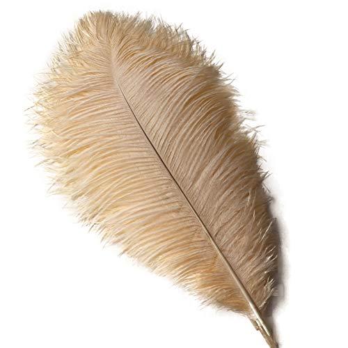 Beige Ostrich - Sowder 10pcs Ostrich Feathers 12-14inch(30-35cm) for Home Wedding Decoration(Champange)