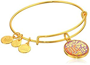 Alex and Ani Words are Powerful, Can You Dig It EWB Shiny Gold Bangle Bracelet