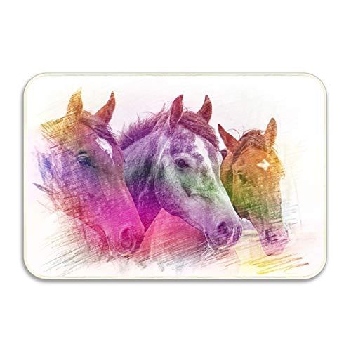 WYFG Indoor Doormat Head Horse Rustic Entrance Welcome Mat 16X24 duty Low ProfileFront Door Mat Home Decor by WYFG