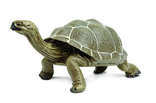 (Safari Ltd  Incredible Creatures Galapagos Adult Tortoise)
