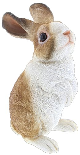 Border Concepts Nature's Gallery Pet Pals (White & Brown (Brown Rabbit)